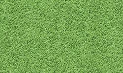DOR03-grass-3
